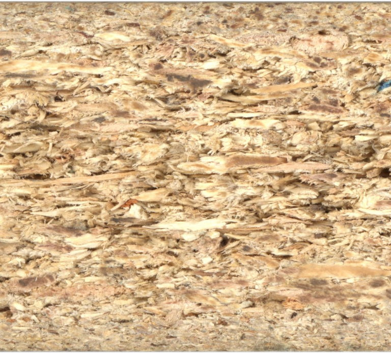 Particle_board-cross_section_scan